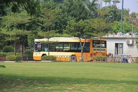 漂亮的公交车