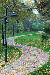 秋天的小路