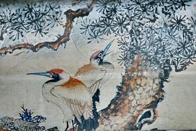 特写松树与大鸟飞禽鸟类翅膀松针