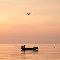 海面上的渔船与海鸥
