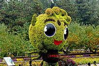 园艺大眼睛萌小娃娃跳跃绿植