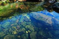 水里长满了青苔的石头