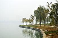 龙源湖岸边