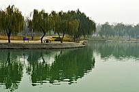 龙源湖景色