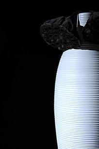 莲蓬与陶瓶
