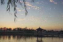 夕阳天空的鱼鳞云