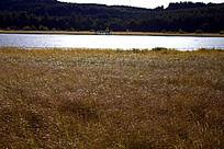 坝上草原上波光粼粼的湖面
