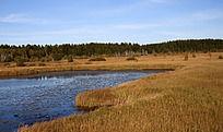 坝上草原中的湖泊