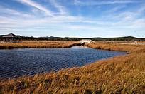 波光粼粼湖面上的白色拱桥