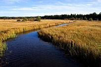 草原上碧蓝的湖面