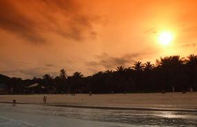 热带雨林海滩日落