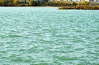 清澈的龙源湖
