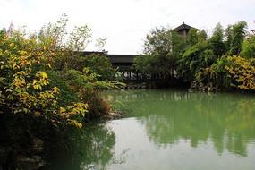 湖泊边树木遮掩着的乌镇建筑