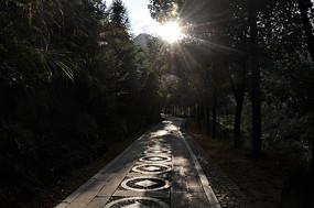 阳光下的石板路