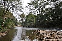 绿树环绕的九曲溪