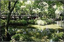 天一税园林景观全景