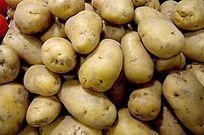 新鲜蔬菜 土豆 马铃薯