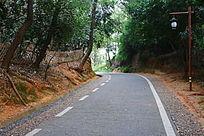 公园里的小公路