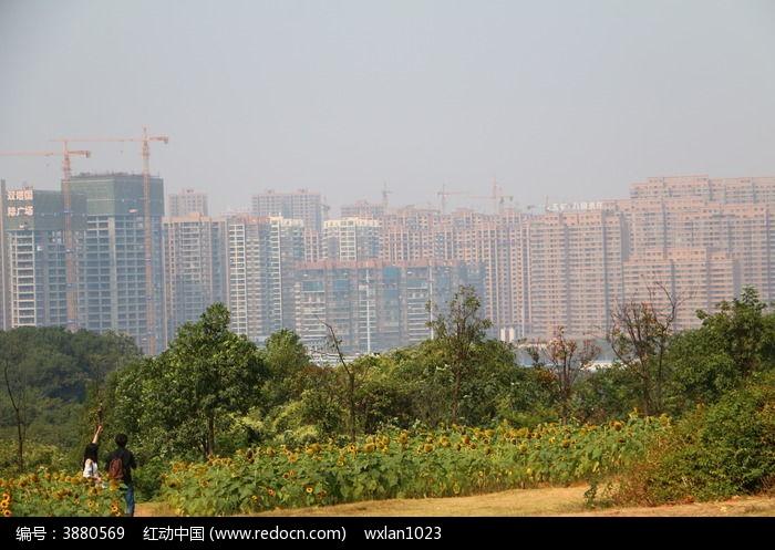 在山顶上的长沙优美的城市建筑风景图片