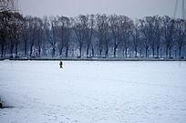 冬季北方美丽雪景