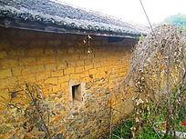 农村老房子的荒凉