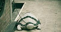 SM小乌龟雕塑