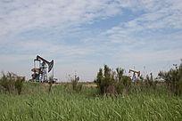 蓝天白云下草丛中的油井