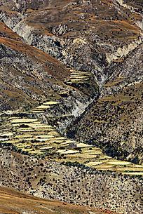 山峰岩壁植被