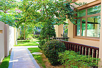 海南清水湾别墅庭院绿化景观