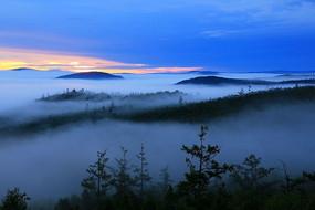 朝阳洒下大森林