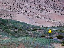 沙地标志牌
