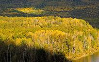 大兴安岭原始森林秋景