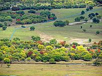 额尔古纳湿地秋林