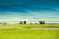 呼伦贝尔草原的蒙古包