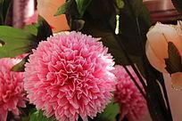粉色大花朵花簇