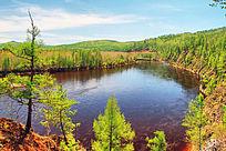 森林河之春