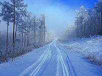 大兴安岭原始森林山路