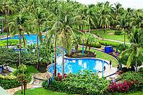 椰子树丛林中的游泳池