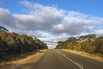 阿德莱德袋鼠岛公路