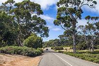 澳洲阿德莱德公路风光