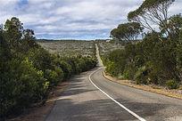澳洲袋鼠岛长长的公路