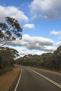 澳洲袋鼠岛公路拐角处