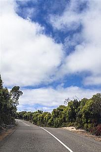 袋鼠岛公路美景
