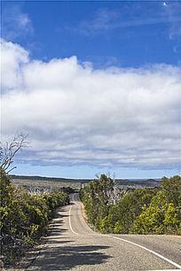 袋鼠岛热带雨林公路沿途美景