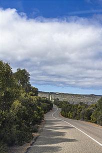 迷个的国外热带雨林公路