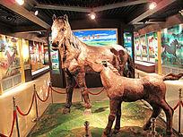 博物馆 三河马雕塑