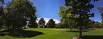 澳洲阿德莱德公园绿地花园