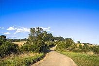 通向山顶农场弯曲的小路