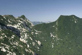 西岳华山植被