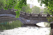 邓州内城河风景